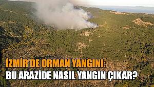 Bilinmeyen bir sebeple orman yandı!