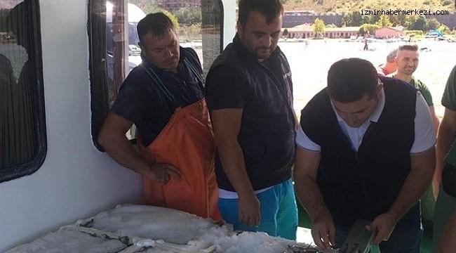İzmir'de su ürünleri kaçakçılığı operasyonu