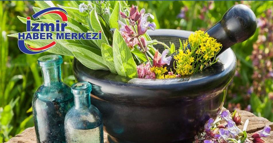 Çinliler aromatik bitkiler için İzmir'de