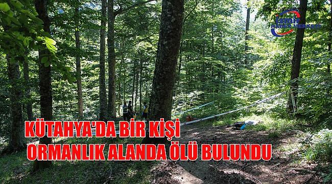 Kütahya'da bir kişi ormanlık alanda ölü bulundu